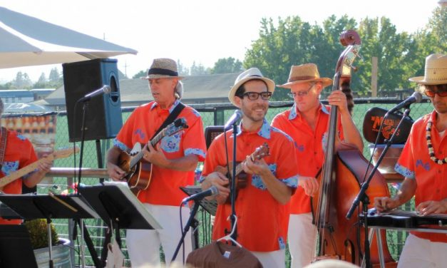 Uke-a-Palooza and Porchfest this Weekend!